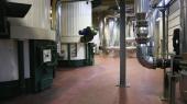 Central biomasa UVA