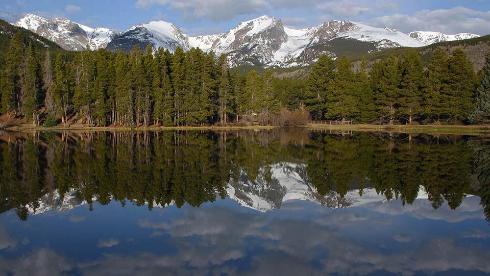 Agua y bosques